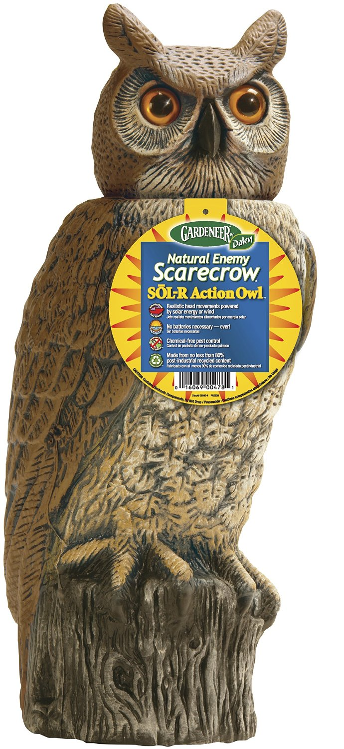 Natural Enemy Scarecrow