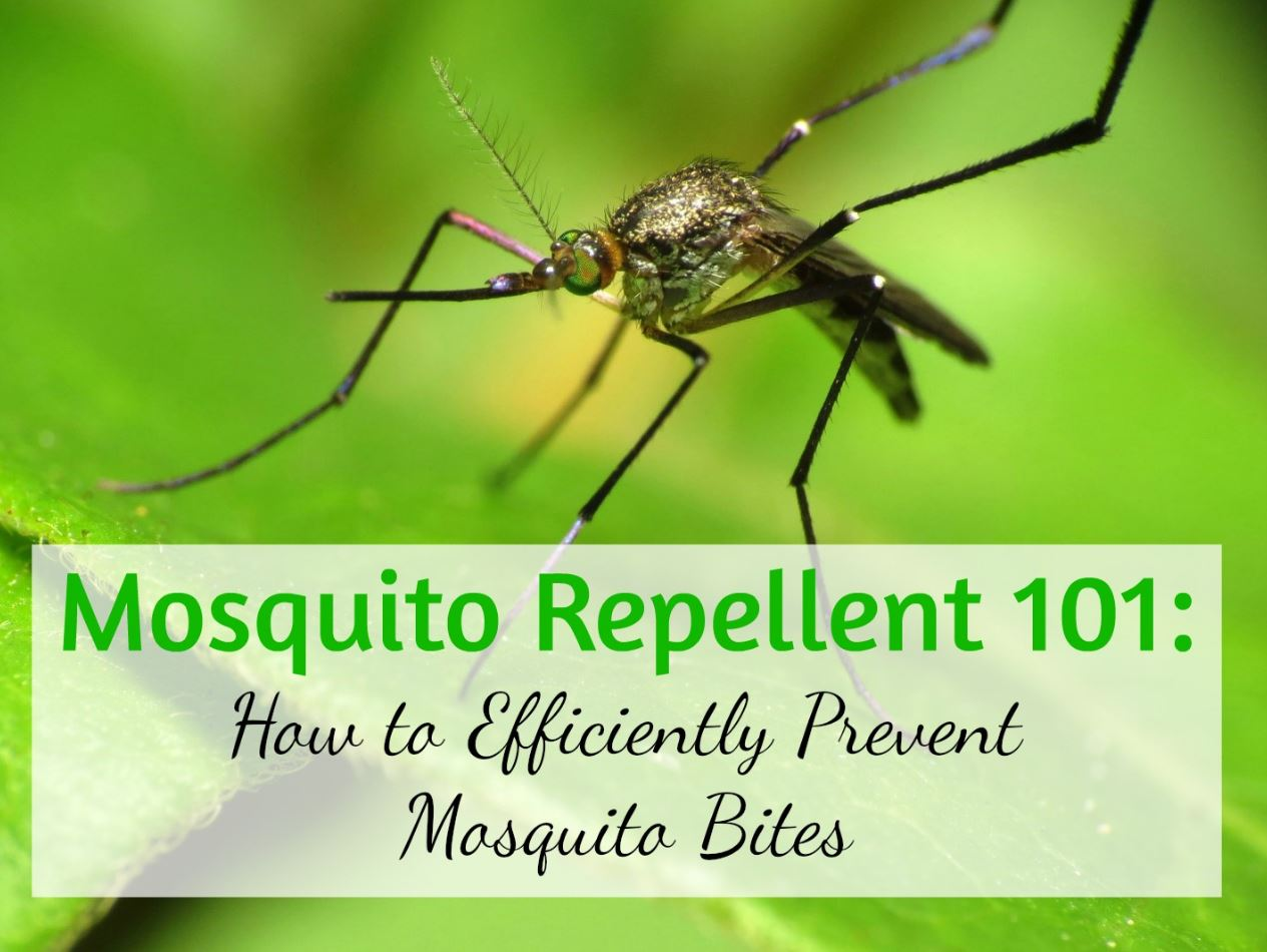 foto de Best Mosquito Repellent Guide Pest Repeller Center