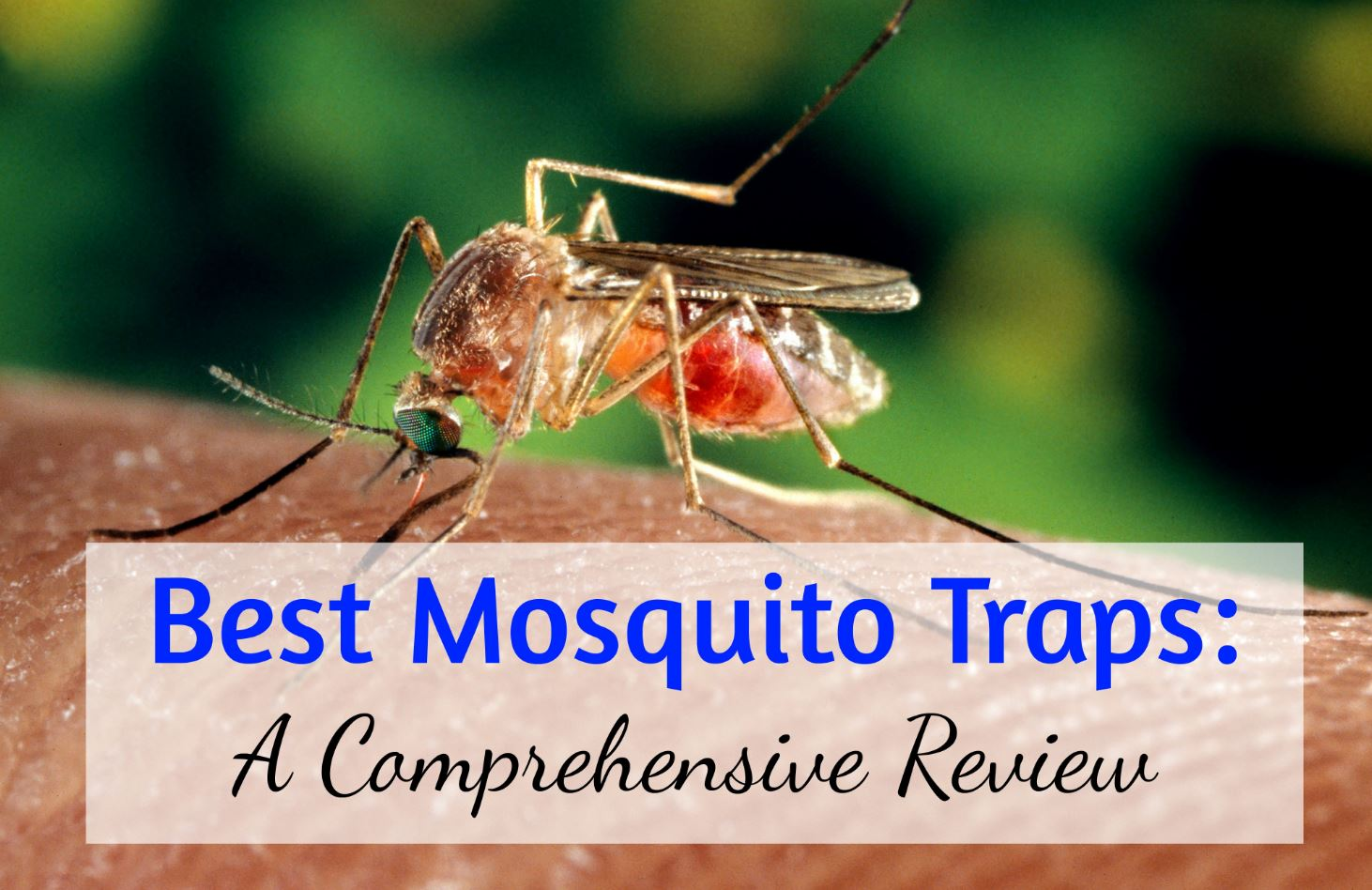 diy mosquito trap reviews do it your self. Black Bedroom Furniture Sets. Home Design Ideas