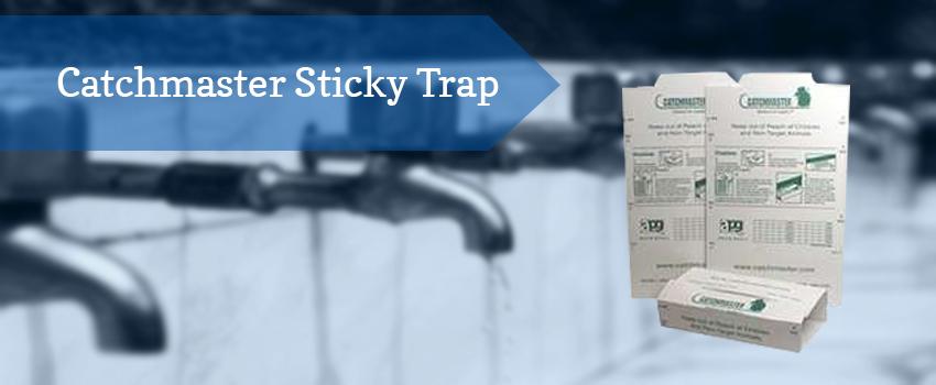 catchmaster-sticky-trap