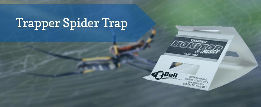 trapper-spider-trap