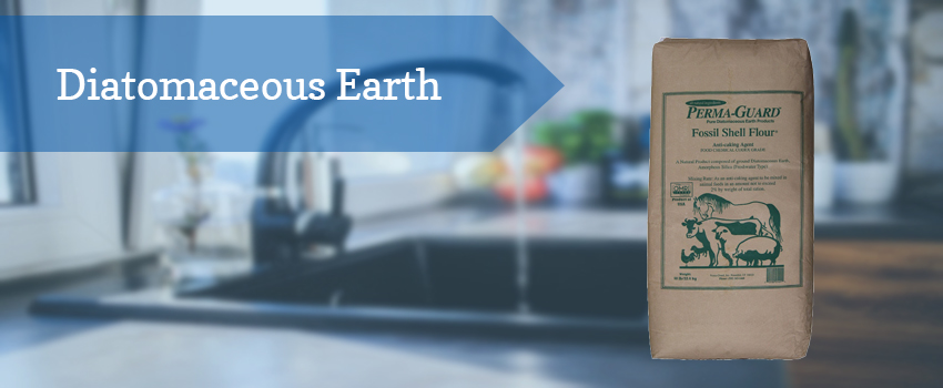 diatomaceous-earth