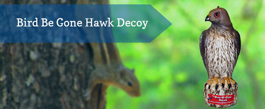 bird-be-gone-hawk-decoy