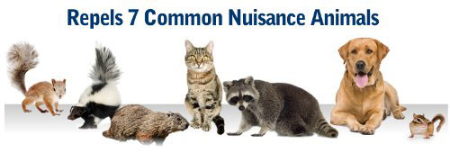 repels 7 types of animal nuisance