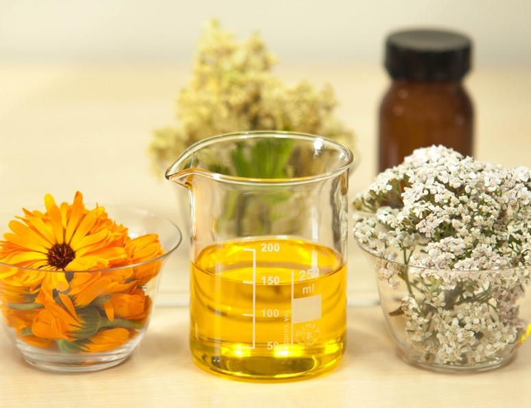 gnat repellent essential oils